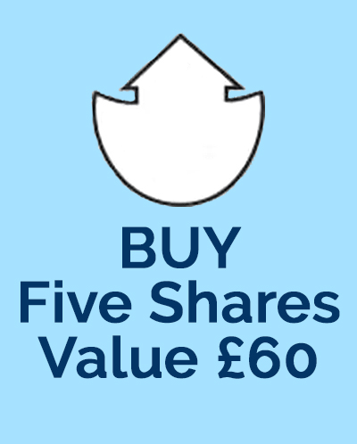 Buy Five Ark Fund Shares